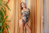 http://nubiles.net/galleries/wanessa/2v_naughty-blonde/photos