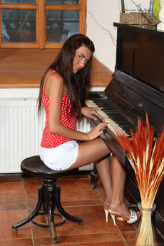 http://fhg.alsscan.com/2015-03-18/THE_PIANIST/