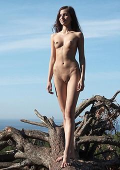 eroticperfection gals femjoy45ko