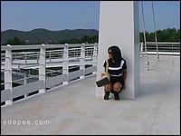 http://www.gravityporn.com/site/needapee/sneaky-pee/index.html