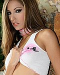 hustlerhuns jenna_haze_fishnet_stockings