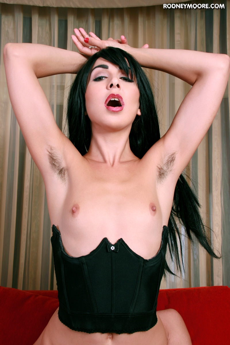 rodneymoore hornyhairygirls hairygirls2010 kitty-sherwood kitty-sherwood_2 jpg