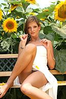 sandrashinehardcore pictures_sites design_003 php sunflowers php