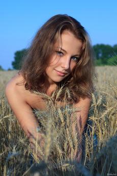 fhg rylskyart 2014-12-18 PSENICCE