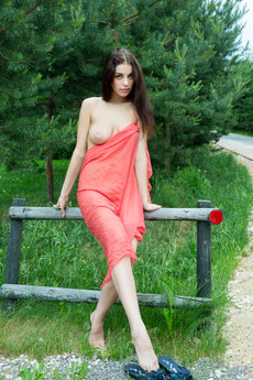 fhg rylskyart 2015-02-19 LIMITIBUS